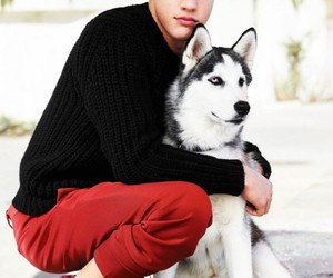 cameron dallas, dog, and cameron image