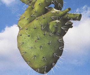 heart, cactus, and art image