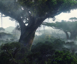 clouds, rainforest, and tree image
