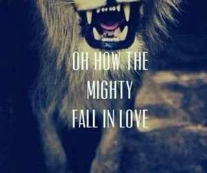 fall out boy, FOB, and lion image