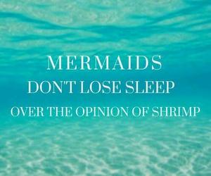 mermaid, opinion, and shrimp image