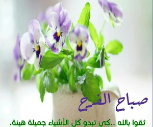 قهوة, صباح, and طيور image