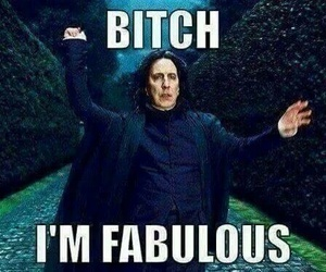 harry potter, bitch, and fabulous image