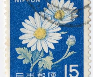 flower, japan, and Nippon image