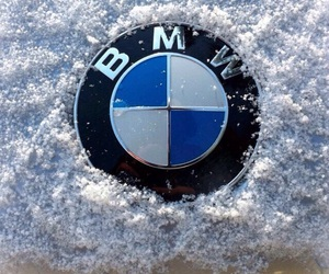 bmw, bow, and car image