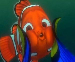 nemo, disney, and fish image