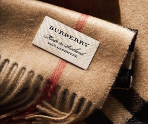 Burberry and scarf image