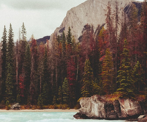 adventure, amazing, and autumn image