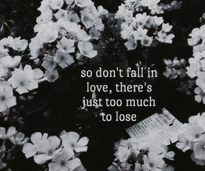 quotes, mayday parade, and flowers image