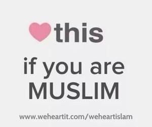 muslim, islam, and heart image