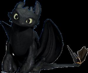 black, dragon, and dragon trainer image
