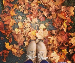 adventure, autumn, and boots image