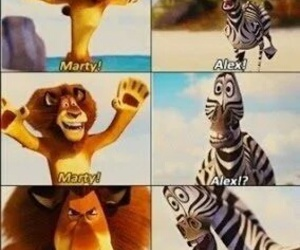 funny, madagascar, and alex image