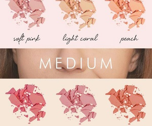 blush, makeup, and beauty image