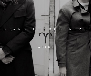 aries, book, and harry potter image