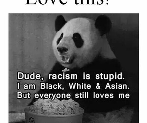 panda and quote image