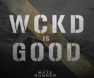 wckd and the maze runner image