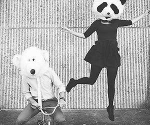 panda, black and white, and bear image