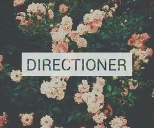 directioner, one direction, and flowers image