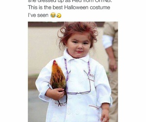 Chicken, costume, and funny image