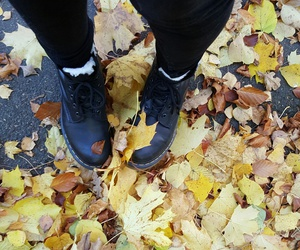 boots, fall, and dr martins image