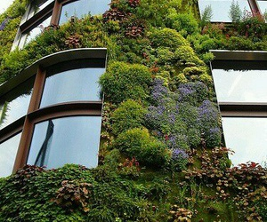 building, nature, and awesome image