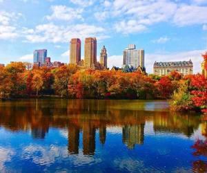 autumn, colourful, and ny image
