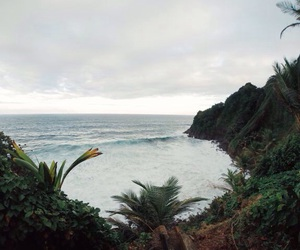ocean, nature, and beach image