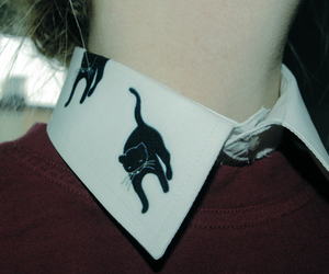 cat, collar, and vintage image