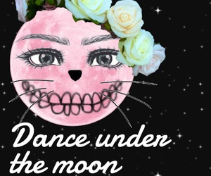 cat, dance, and overlay image