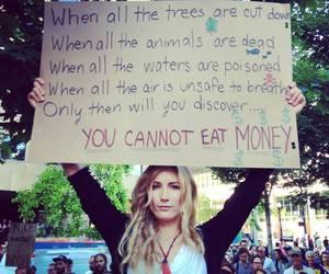 money, animal, and tree image