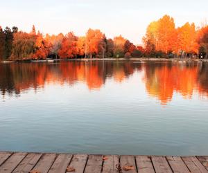 america, autumn, and lake image