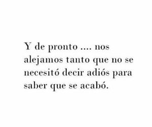 frases, love, and 💔 image