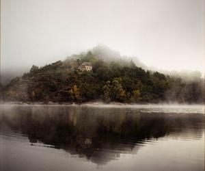 fog, nature, and mist image