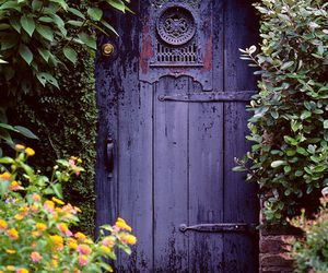 door, flowers, and nature image