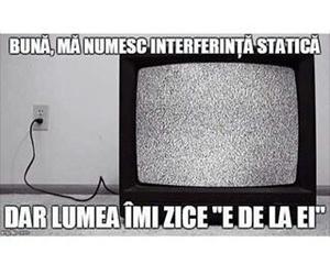 funny, romana, and televizor image
