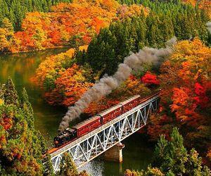 autumn, train, and nature image