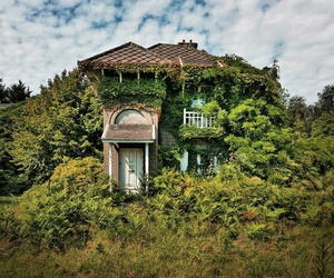 abandoned, nature, and reclaimed by image