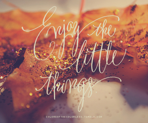 leaves, glitter, and little things image