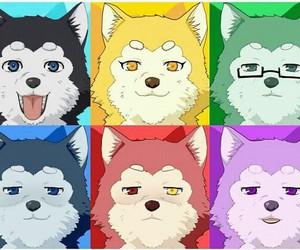 kuroko no basket, anime, and dog image
