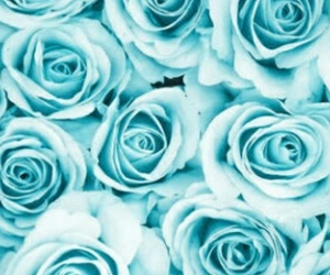 background, flower, and blue image