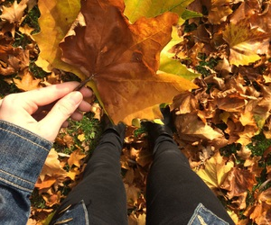 autumn, chic, and indie image