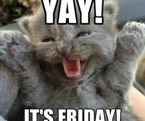 friday and cute image