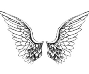 overlay, wings, and angel image