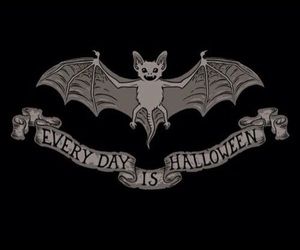 bat and Halloween image