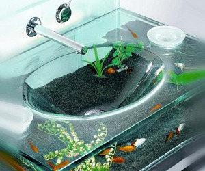 fish, sink, and cool image
