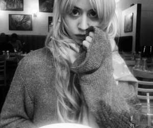 allison harvard image