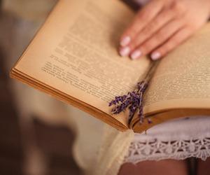 books, lavender, and romantic image