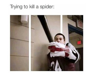 spider, teen wolf, and dylan o'brien image