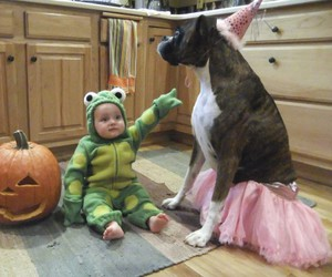 baby, costume, and dog image